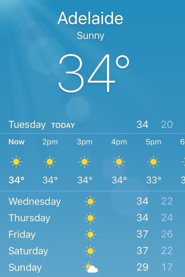 アデレード天気